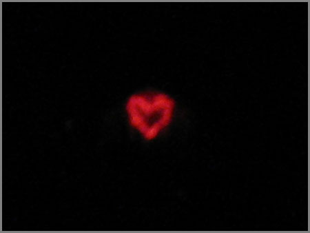 February Fourteenth Heart of Light