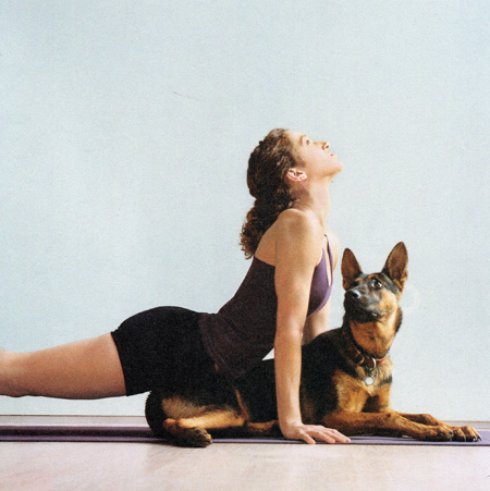 Lady Raping Dog Yoga Position