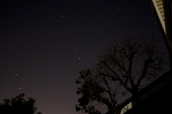 san diego arizona san clemente power outage tree silhouette