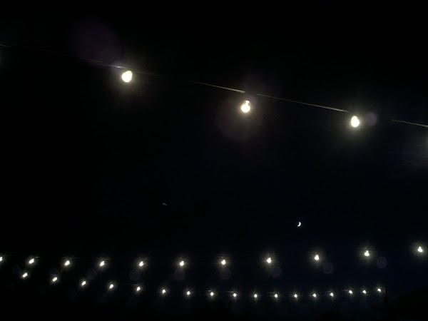 photograph 365 project picture a day moon amidst overhanging lights