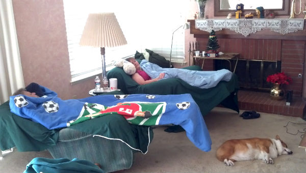 Corgi sleeping with old people